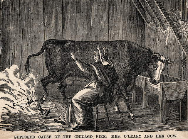 Mrs_OLeary's_cow